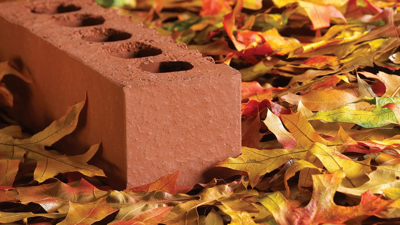 Pollution Absorbing Bricks